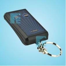 Elsema Key302DA 2 Button Remote